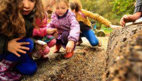 Boswachterfeest - De Natureluur Diersporen zoeken