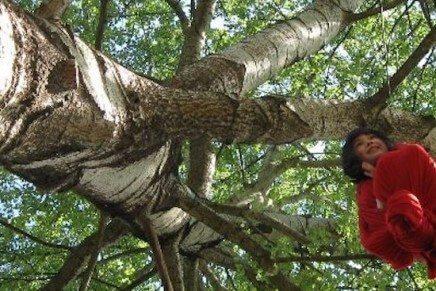 Lees alles over Natuurspeeltuin de Natureluur
