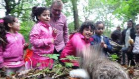 Eddie Eekhoorn zoekt walnoten de Natureluur