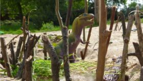 Kabouterpretpark maken De Natureluur