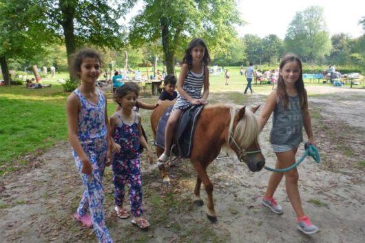 Pony feestje De Natureluur