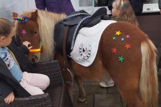 Pony feestje Eenhoorn De Natureluur