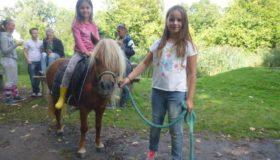 Pony feestje tot 11 jaar De Natureluur