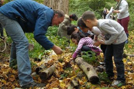 Nieuw ! Buiten lessen aanbod voor scholen in de Natureluur!