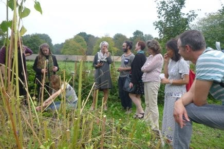 Workshop muziek van planten