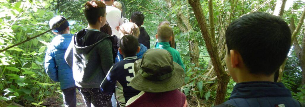 Activiteiten voor groepen in de Natureluur